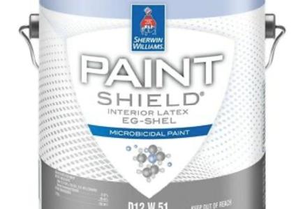 😷 Hand Sanitizer Paint 😷